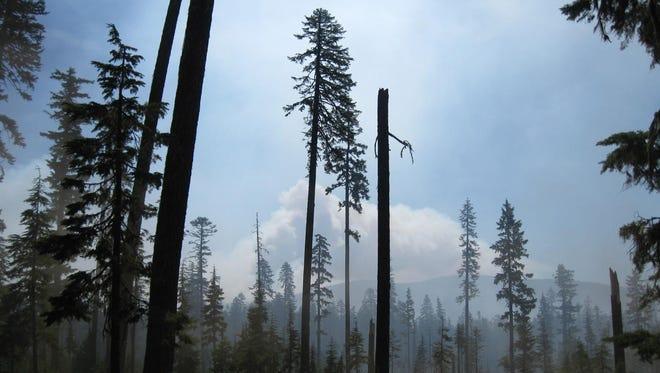 Camas Prairie Fire on July 18, 2014.