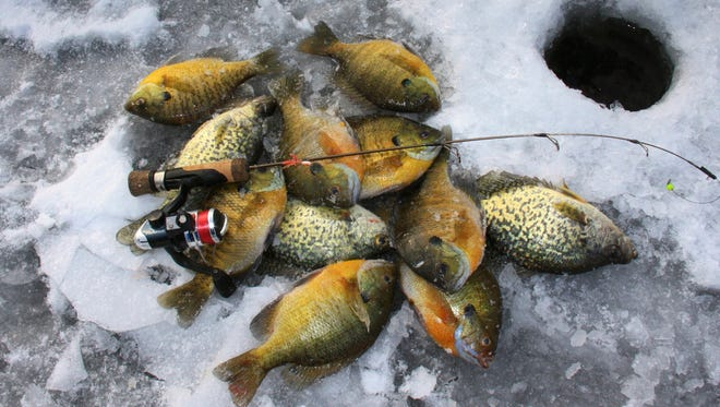 Chasing winter panfish is a popular activity for many anglers.