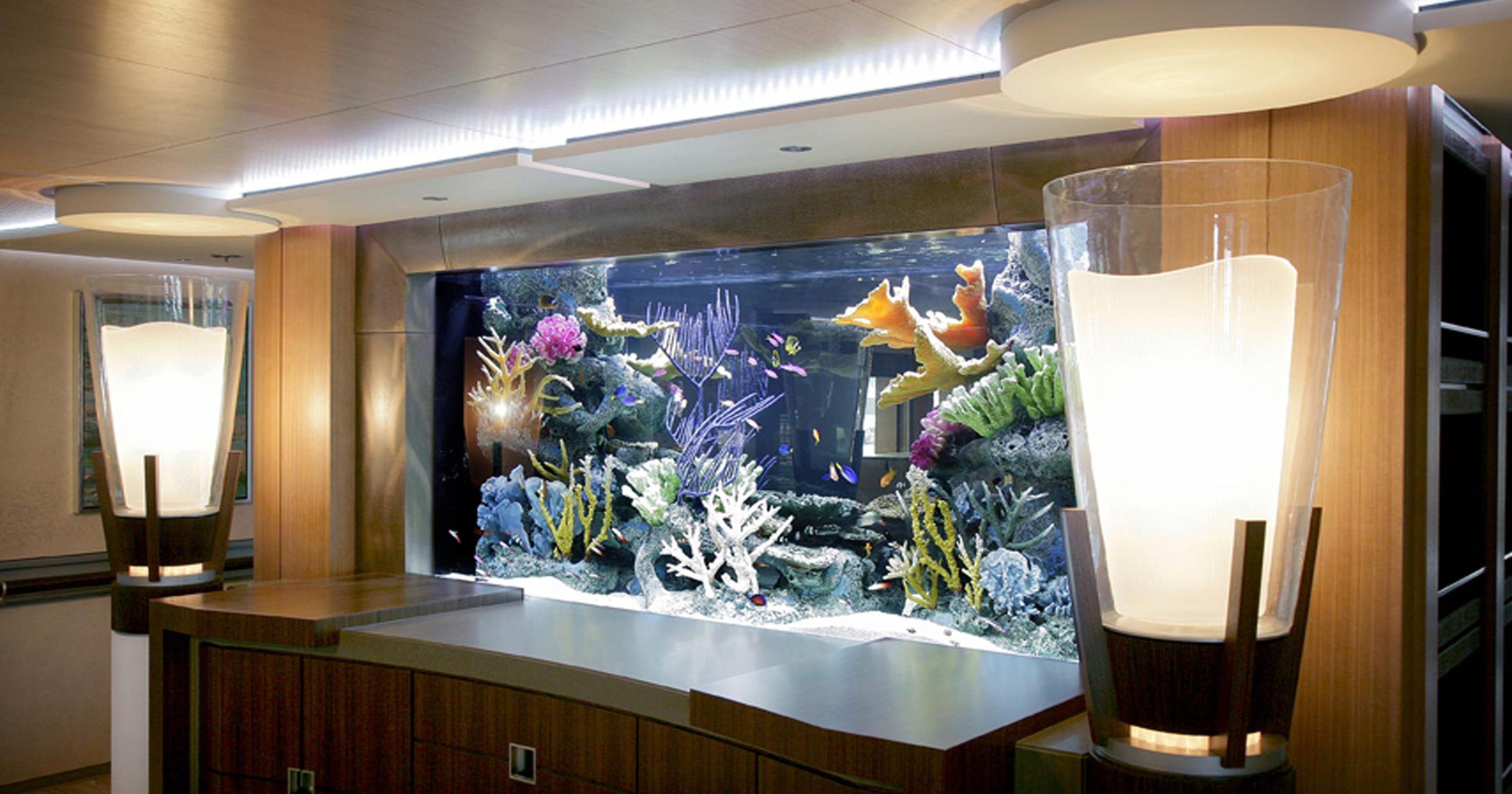aquariums outreach team worked - 1000×667