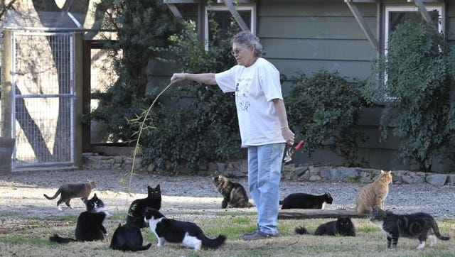 Joan Neptune plays with cats outside her home in Anderson in February 2014. The home is where Neptune and her husband, Don, run Stillwater Cat Haven.