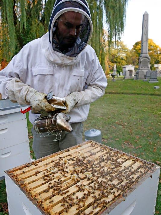cemetery bees.jpg