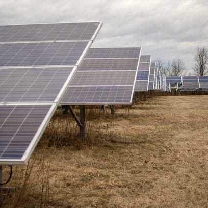 Part of the solar array in Essex.
