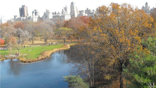 Researchers from Colorado State University and the University of Colorado Boulder collected nearly 600 soil samples in New York's Central Park and discovered a wealth of undescribed species beneath the iconic urban green space.
