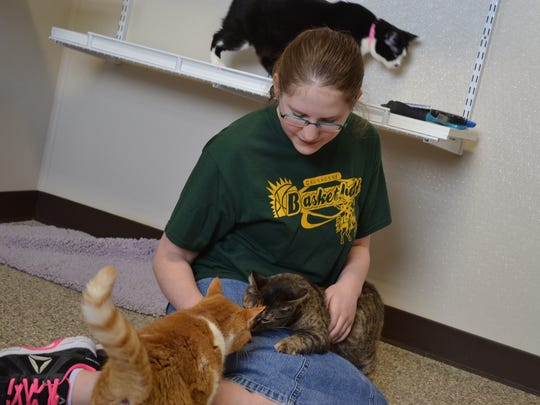 McKenna Price, 11, volunteered at the Humane Society of Sandusky County with other Harvest Temple Christian Academy students as part of the school's Community Servathon. So far, the fundraiser has raised over $18,000 for the school.