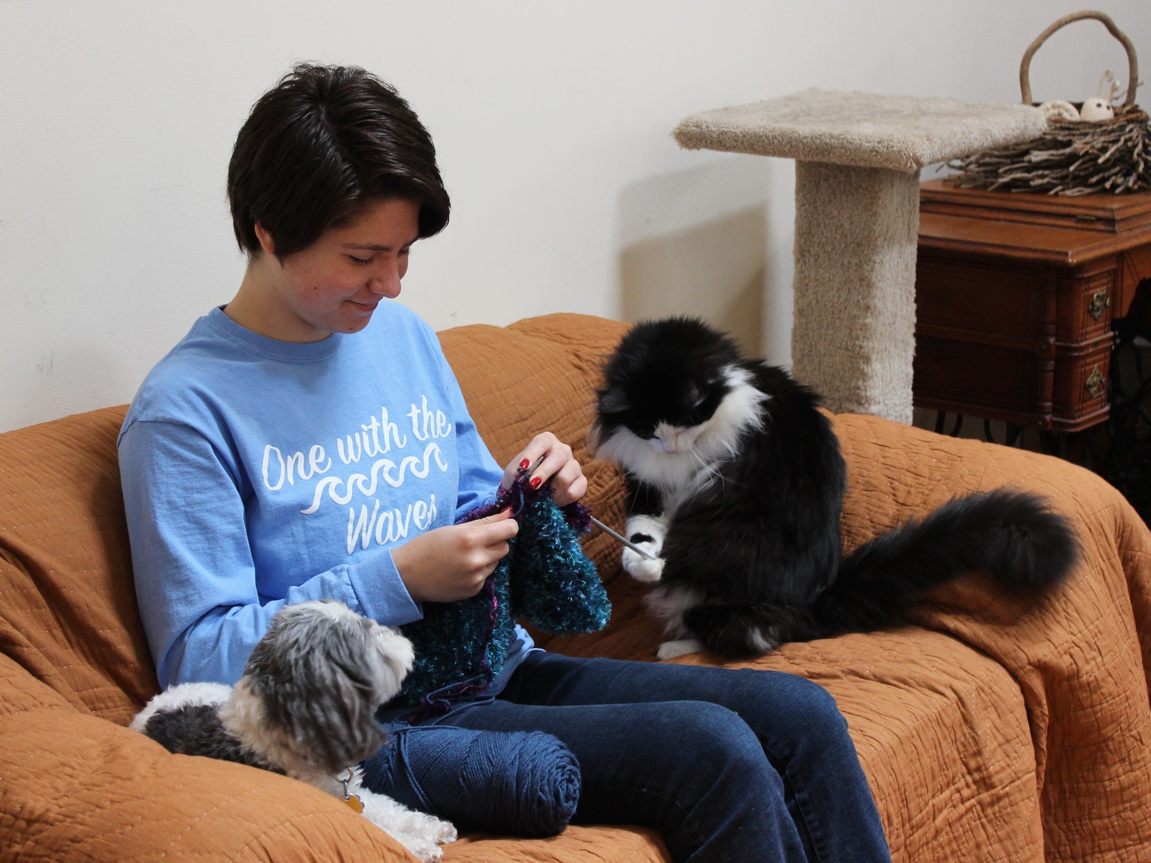 Sierra RyanWallick has knitted 1,300 items to help Forgotten Cats, a Greenville nonprofit group that helps feral cats and cats needing adoption. She has won a Jefferson Award for her contributions.