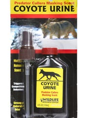 Coyote urine, with infinite uses, is a gift that is sure to make an impression.