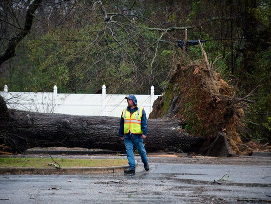 Workers clear a tree that fell on a street North Broad