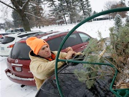 Christmas Tree Cost