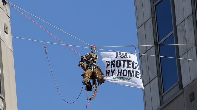 Nine Greenpeace activists, including one dressed in a tiger suit, rappel and hang banners in protest of Proctor & Gamble outside of the company's Downtown headquarters March 4.