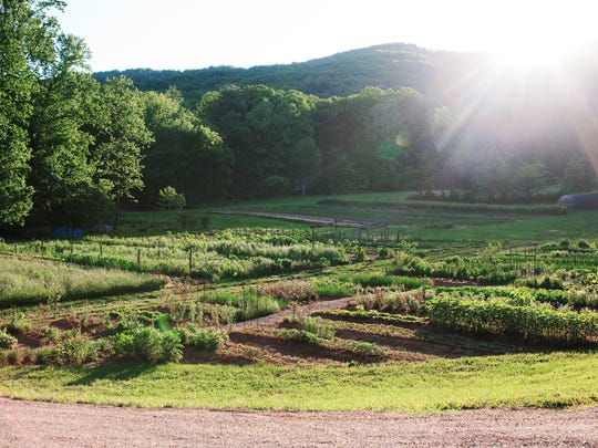 An on-site garden provides many fresh ingredients for meals served at Blackberry Farms.