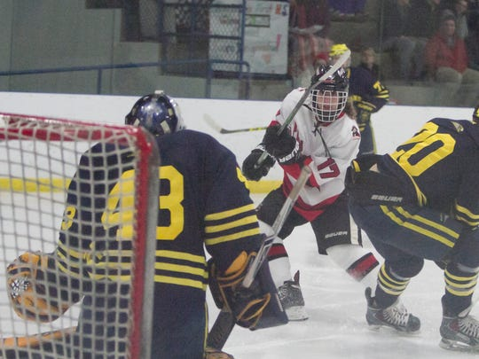 Logan Schmitt had 11 goals and 13 assists for Pinckney last season.