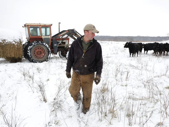 Dan Hanrahan feeds his cattle on the family farm Nov.