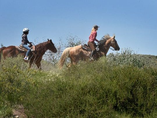 Meet National Park Service horses on Saturday.