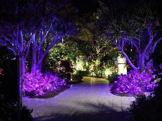 """The annual """"Lights in the Garden"""" at Naples Botanical Garden in East Naples."""