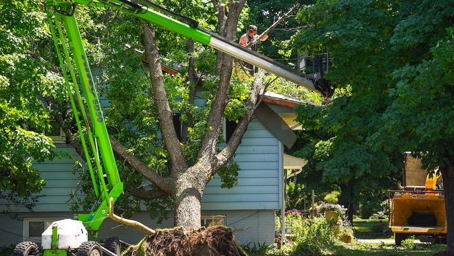 Workers clear a tree resting against a home at the intersection of Dundee Lane and Second Street South Monday, June 12, in Waite Park. The wind damage from Sunday mornings storm toppled trees and broke power poles.