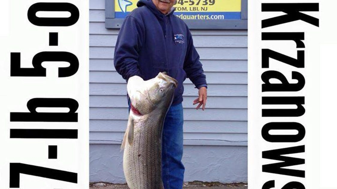Manahawkin angler takes top honors in lbi surf fishing classic for Lbi surf fishing report