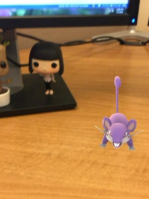 A wild rattata sits on my friend's desk at her work in Florida. She's one of many of my friends currently obsessing with Pokemon Go.