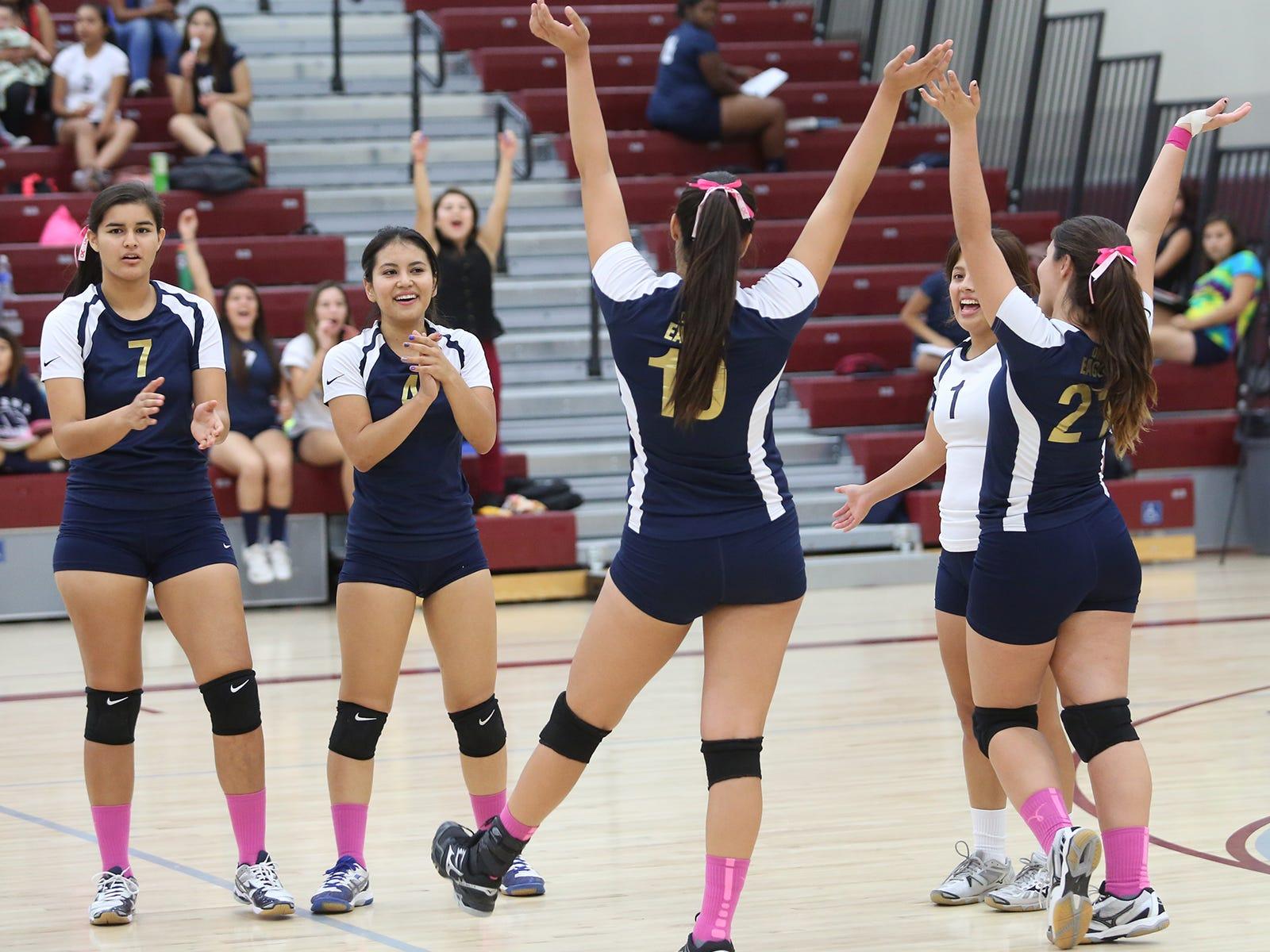dvl volleyball