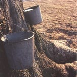 Maple syrup is made in wood-fired open kettles at the annual Highland County Maple Festival, one of several events highlighted by the Fields of Gold agricultural tourism promotion.