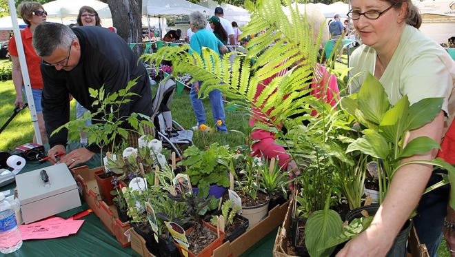 Plants and garden shoppers were at the Paine Art Center's annual Festival of Spring in this file photo. This year's event is Saturday, May 19.