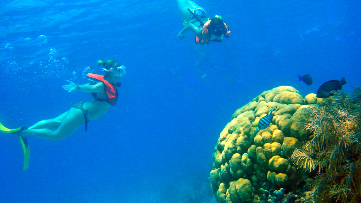 Experience cozumel usa today travel - Cozumel dive packages ...