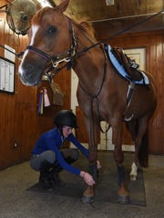 Willow Vince, 13, of Verbank gets her horse ready for
