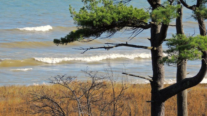 Picturesque sand dunes and seascapes dominate the beachfront at Kohler-Andrae State Park on Sheboygan County's Lake Michigan shoreline.
