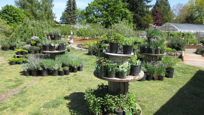 The Marion County Master Gardener Plant Sale is planned for May 1-3 this year.