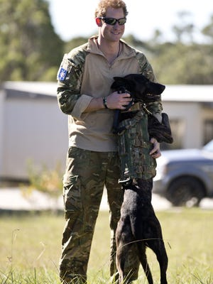 Prince Harry poses with a military dog during an exercise with Australia's 2 Commando Regiment in Sydney on May 7,