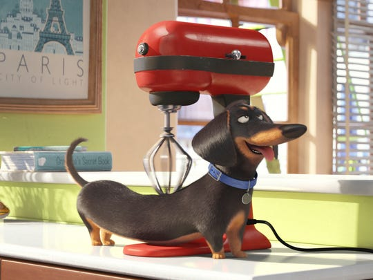 In this image released by Universal Pictures, Buddy,