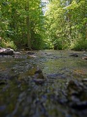 A creek Monday, June 6, at Goodells County Park.