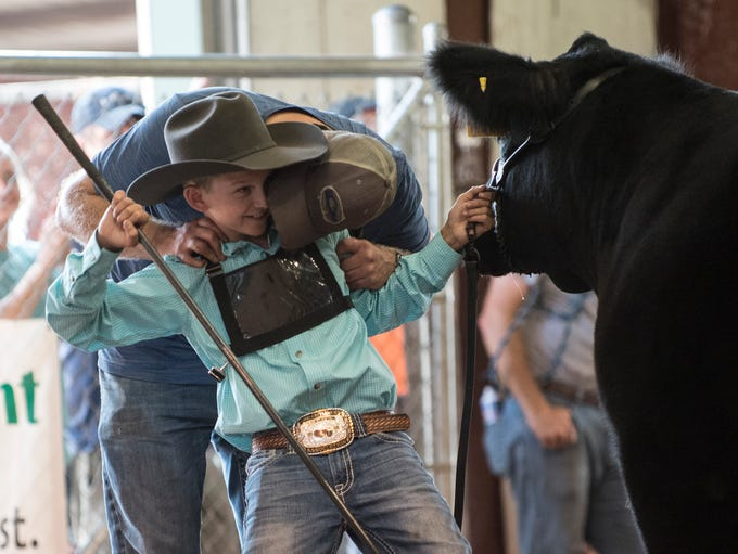 Images from the 2018 Ross County Jr. Fair Beef show.
