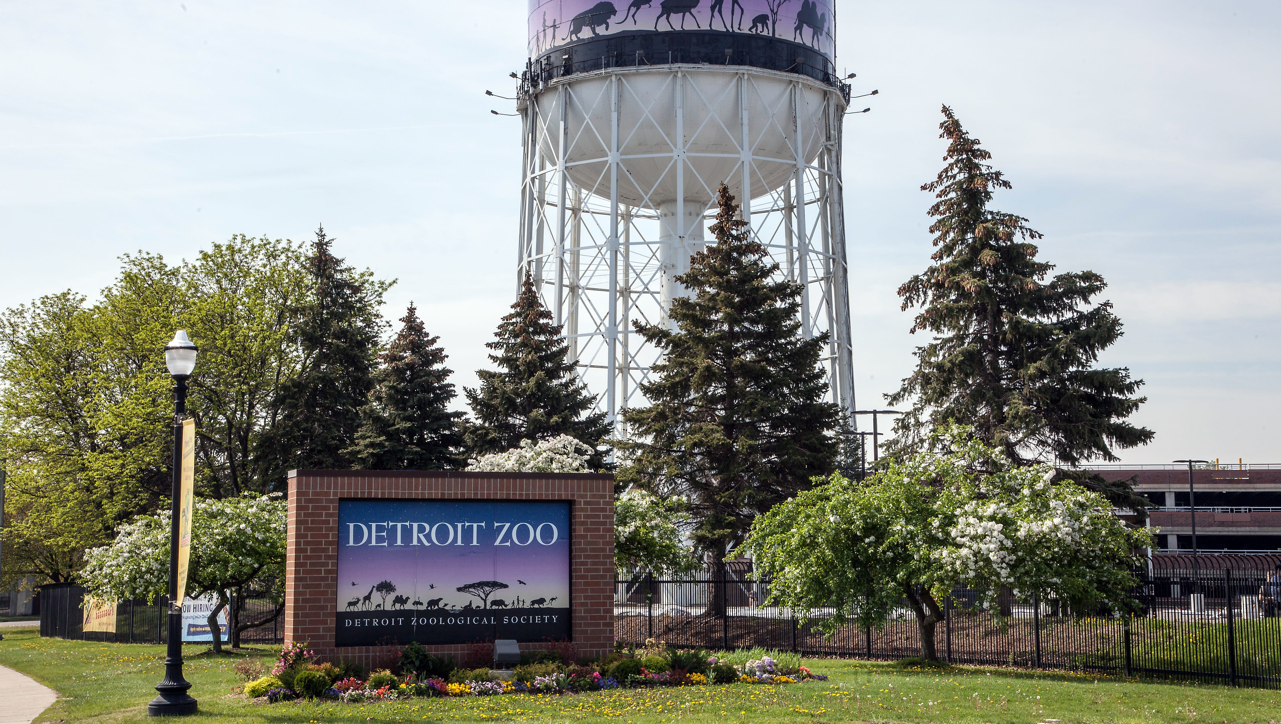 Ex Food Service Manager At Detroit Zoo Sues Over Firing