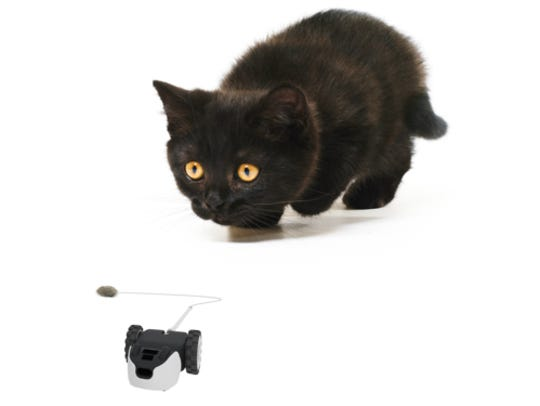 Petronic's Mousr makes a fun playmate for your cat.