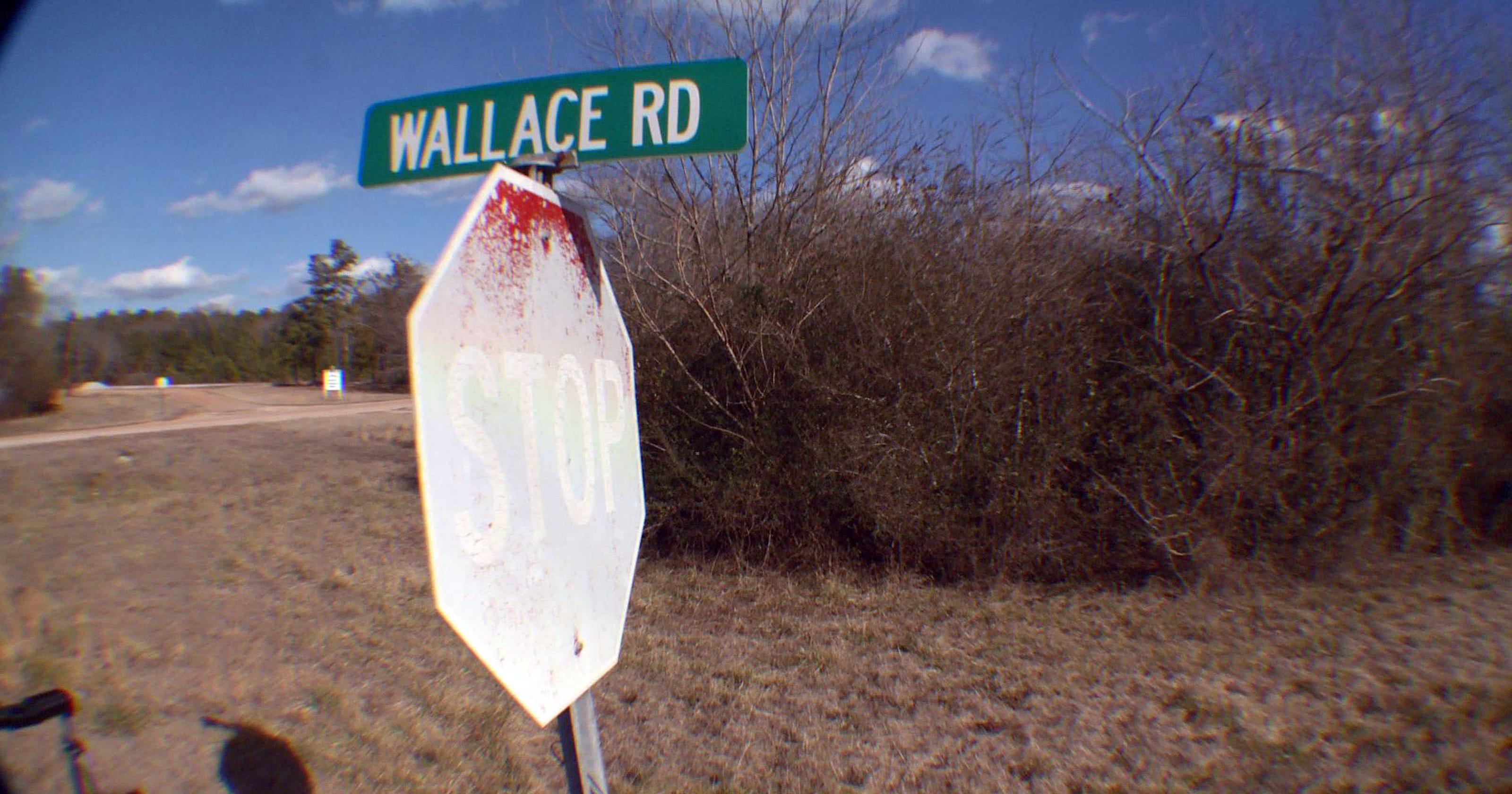 Image result for Georgia William Wallace street potts