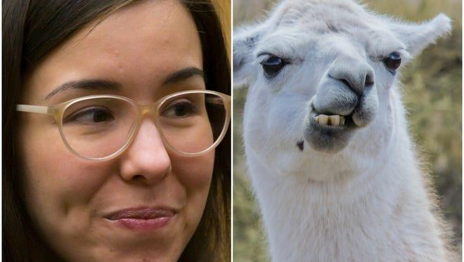 Arias v. Llama