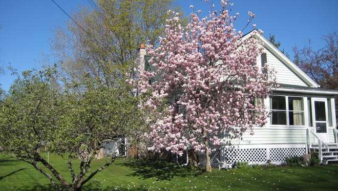 You're ready for spring—but is your house