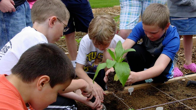 Lincoln Elementary School students worked in 2013 in the community garden in at St. Alban's Church in Marshfield.