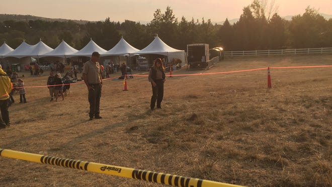 Washoe County Parks rangers Marie Fong and Bob Holland examine the area where ground-nesting hornets swarmed a crowd Friday, Sept. 11, 2015 at the Great Reno Balloon Race.