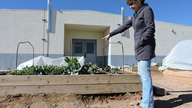 Dorian Dodson points out the different kinds of vegetables that are growing in the raised beds. Dodson is a Master Gardener and Board President for the Friends of Columbus Community Garden organization in the village.