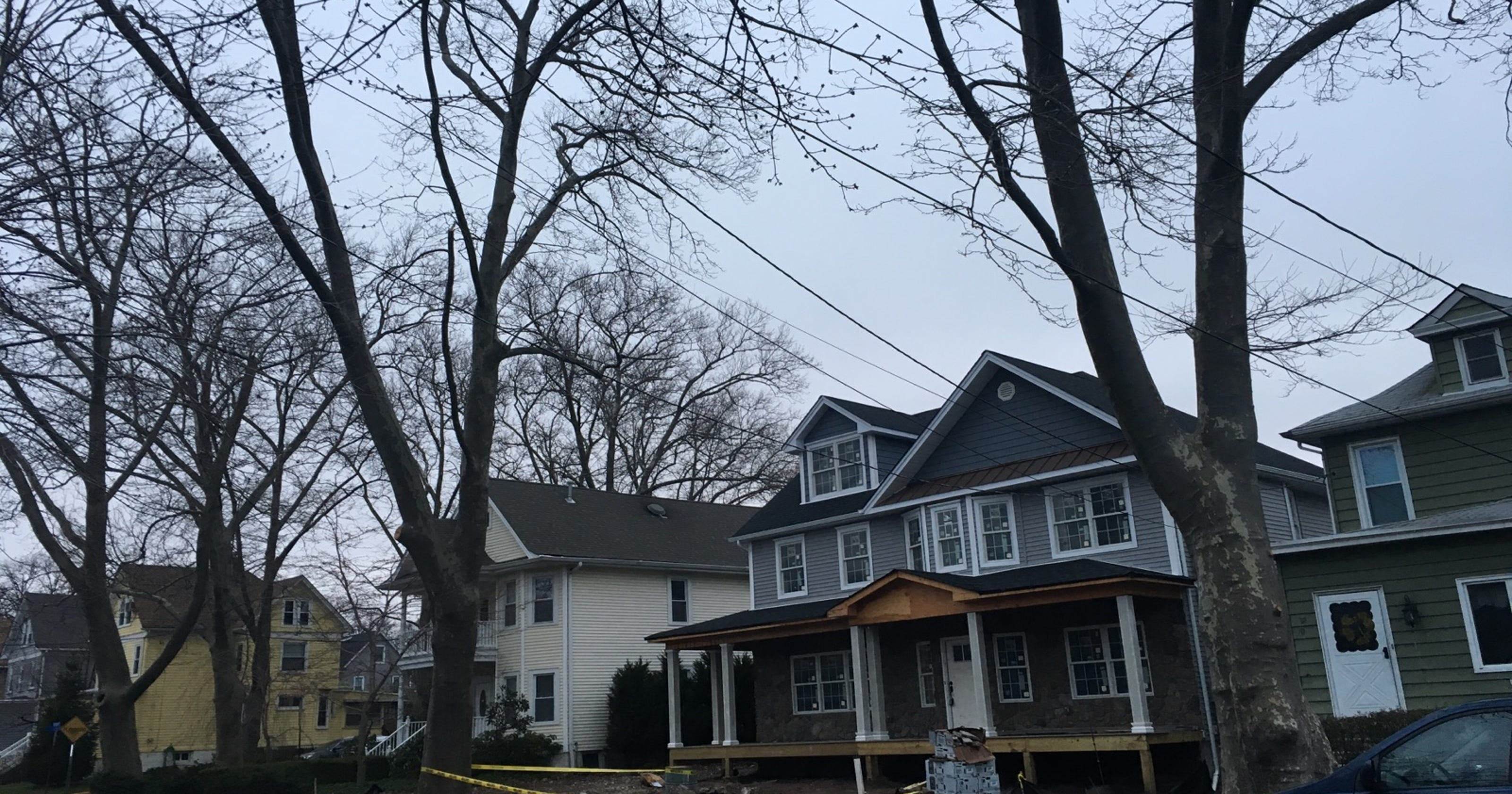 Rutherford uses heavy fines to protect shade trees