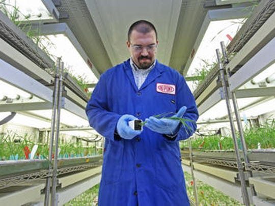 A researcher at DuPont's Stine Haskell research center near Newark.