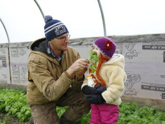 Tony Schultz feeds his 4-year-old daughter Maple some mizuna vegetables Monday, Nov. 13, 2017, in his greenhouse at Stoney Acres Farm in Athens, Wis.