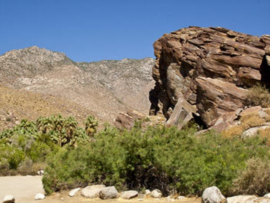 This Desert Sun file photo shows the Indian Canyons area in Palm Springs. A search effort was launched to find a hiker who's been missing since Wednesday.