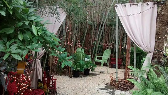 Strong, sustainable and flexible, bamboo is part of the grass family and is a simple, elegant plant that ranges in color from green to blue to yellow to black.