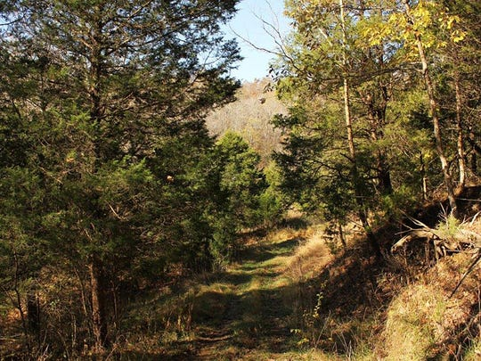 Views of the Thurman property, Bernheim's newest property acquisition November 10, 2016.