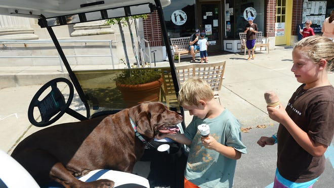 Luke, center, and Ryan Jones pet Foster, the inspiration for the Brown Dog Ice Cream's name outside the Cape Charles business.