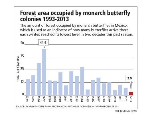 082213monarch-butterflies-graphic