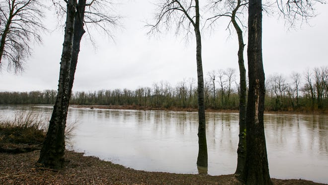 The banks of the Willamette River  near Pine and Front streets NE. The city of Salem released nearly 57 million gallons of undiluted raw sewage into the Willamette last week after nearly 3 inches of rain overwhelmed the city's sewage treatment plan.