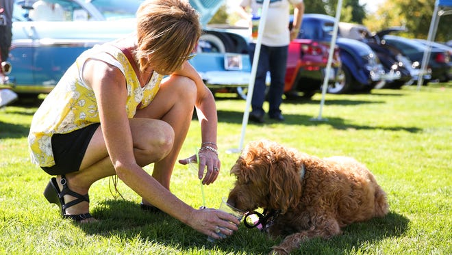 Shelley Day provides some water for her labradoodle Bella on Saturday, Sept. 2, 2017, in Salem's Riverfront Park. The high for Saturday was forecast for 104 degrees; the National Weather Service issued a heat advisory lasting until Tuesday.